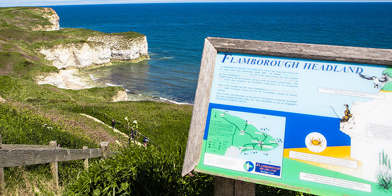 Flamborough Headland View